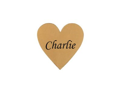 Flexi plaque – Heart